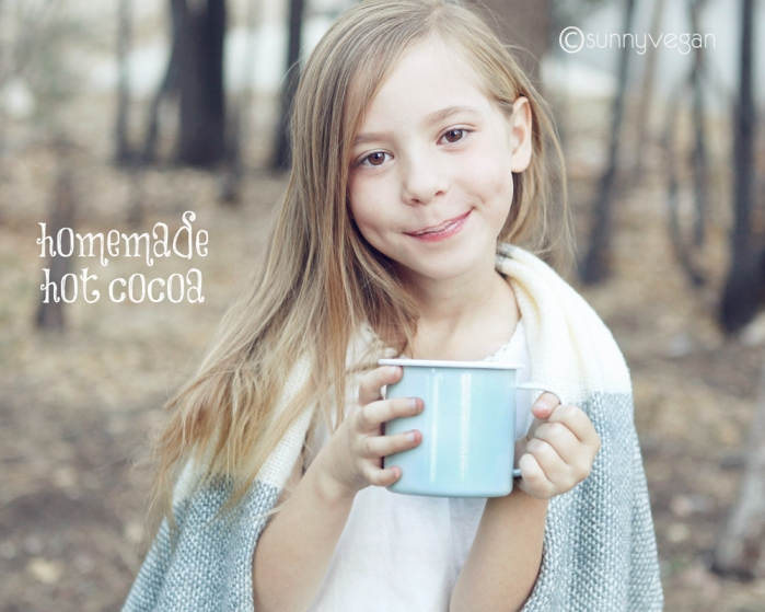 homemade hot chocolate recipe from sunny vegan #mywestelm